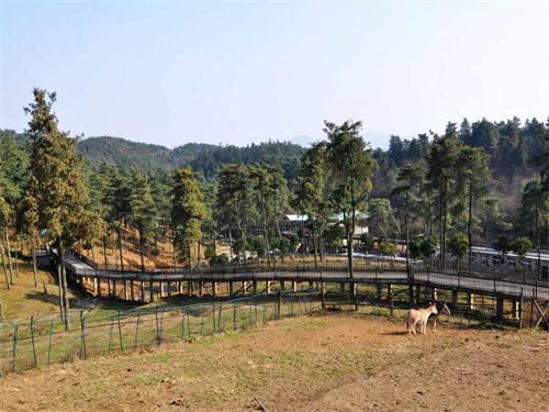 贵阳森林野生动物园位于贵阳市修文县扎佐镇.