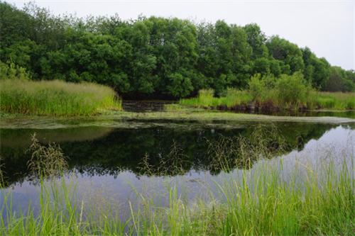 美人湖位于苍狼白鹿岛度假村南岸,是一个高.
